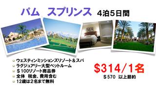 オリジナル日本語 Worldventures Presentation(ドラッグされました) 4.jpg